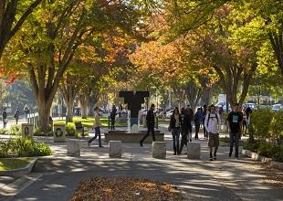 "Sac State Academic Calendar 2020 Sacramento > CSU International Programs"" title=""Sac State Academic Calendar 2020 Sacramento > CSU International Programs"" width=""200″ height=""200″> <img src="